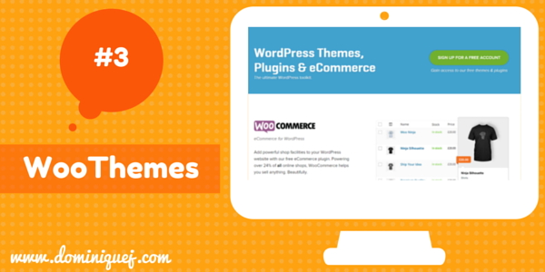 WooThemes WordPress Themes for bloggers