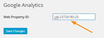 Google Analytics WordPress plugin step 2
