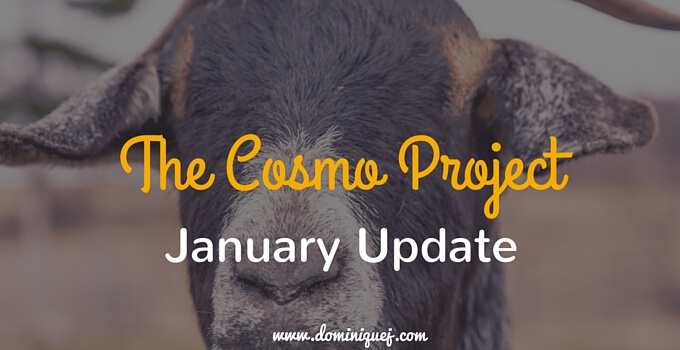 Cosmo Project January Update