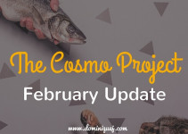 Cosmo Project February Update